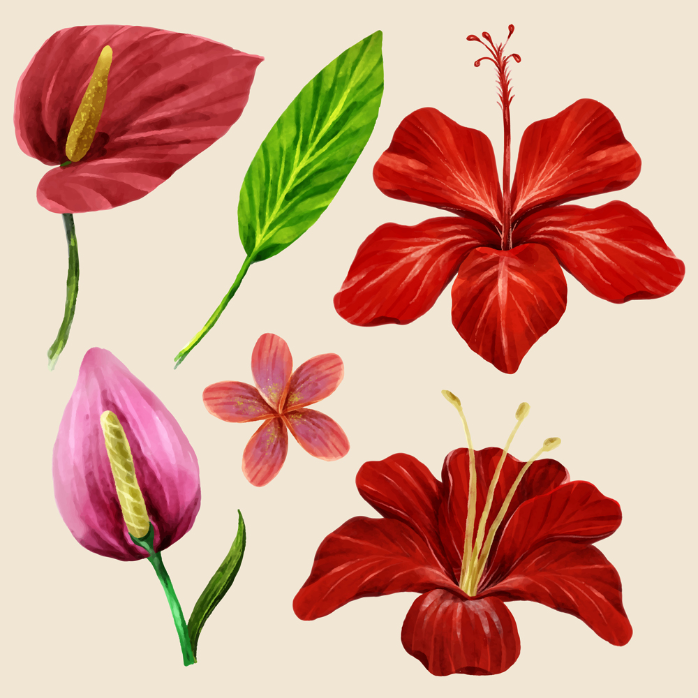 Watercolor Tropical Leaves And Flower Collection