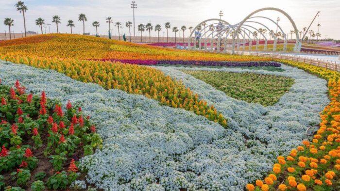 Festival Bunga di Yanbu Menarik Puluhan Ribuan Pengunjung