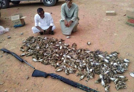 Dua Pemuda Berburu Burung di Tengah Pemukiman Penduduk