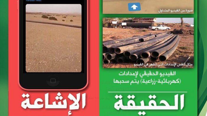 Ular Terpanjang di Gurun Pasir Arab Saudi, Ini Faktanya