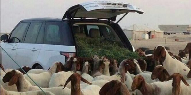 Begini Nasib Kendaraan Tak Bertuan di Jalanan Arab Saudi
